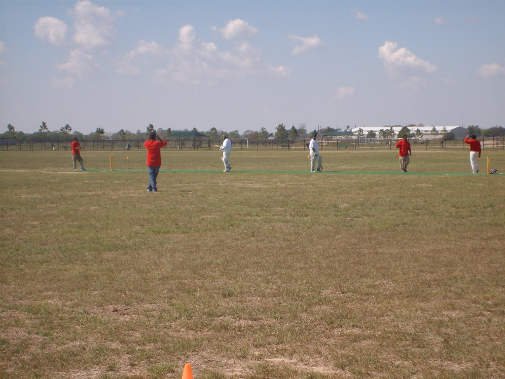 Kindred Doctor's Cricket in Katy